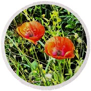 Poppy Beauties Round Beach Towel