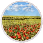 Round Beach Towel featuring the photograph Poppy Fields by Marion McCristall