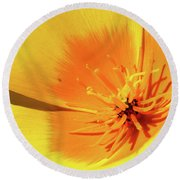 Poppy Impact Round Beach Towel