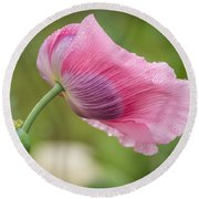 Poppy In The Wind Round Beach Towel