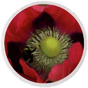 Poppy Love Round Beach Towel