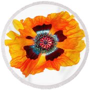 Poppy Pleasing Round Beach Towel