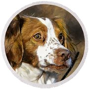 Portrait Of A Brittany - D009983-a Round Beach Towel