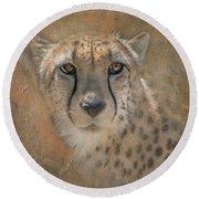 Portrait Of A Cheetah Round Beach Towel