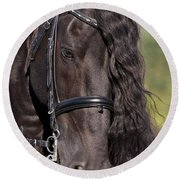 Portrait Of A Friesian Round Beach Towel