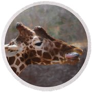 Portrait Of A Giraffe Round Beach Towel by Ernie Echols