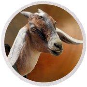 Portrait Of A Goat Round Beach Towel