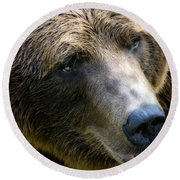 Portrait Of A Grizzly Round Beach Towel by Lana Trussell