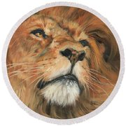 Round Beach Towel featuring the painting Portrait Of A Lion by David Stribbling