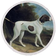 Portrait Of A Liver And White Pointer Round Beach Towel by George Garrard