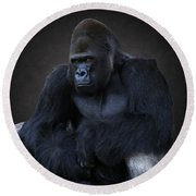 Portrait Of A Male Gorilla Round Beach Towel