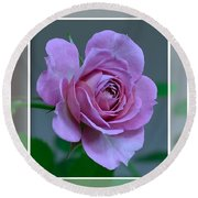 Portrait Of A Rose Round Beach Towel by Kathy Eickenberg