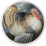 Portrait Of A Turkey  Round Beach Towel