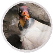 Portrait Of A Vulture. Round Beach Towel