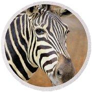 Portrait Of A Zebra Round Beach Towel by Rosalie Scanlon