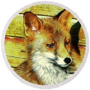 Portrait Of An Urban Fox Round Beach Towel