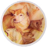 Portrait Of Chi Chi Round Beach Towel
