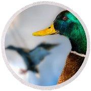 Portrait Of Duck 2 Round Beach Towel
