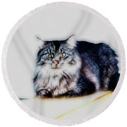 Portrait Of Maine Coon, Mattie Round Beach Towel