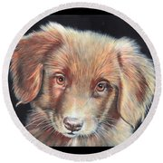 Portrait Of Toby Round Beach Towel