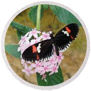 Round Beach Towel featuring the photograph Postman Butterfly, Heliconius Melpomene by Paul Gulliver