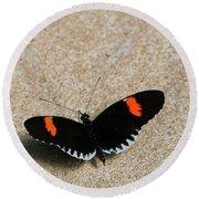 Postman Butterfly Round Beach Towel