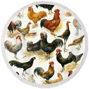 Poultry Round Beach Towel