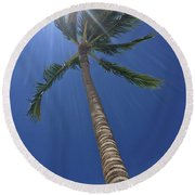 Powerful Palm Round Beach Towel by Karen Nicholson