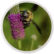 Prairie Clover And The Bee Round Beach Towel by Garry McMichael