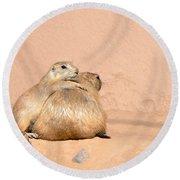 Prairie Dog Friends Round Beach Towel by Laurel Powell