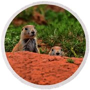 Round Beach Towel featuring the photograph Prairie Dogs 004 by George Bostian