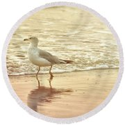 Round Beach Towel featuring the photograph Prancing Along by JAMART Photography