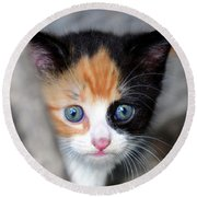 Round Beach Towel featuring the photograph Precious by David Lee Thompson