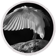 Preening Great Egret By H H Photography Of Florida Round Beach Towel