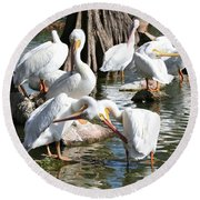 Preening Pelicans Round Beach Towel