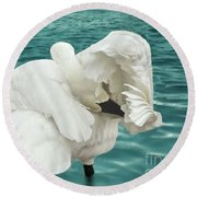 Round Beach Towel featuring the photograph Preening Trumpeter Swan  by Janette Boyd