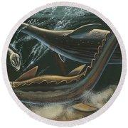 Prehistoric Marine Animals, Underwater View Round Beach Towel