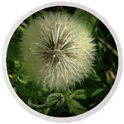 Pretty Fluffy Seedhead Round Beach Towel