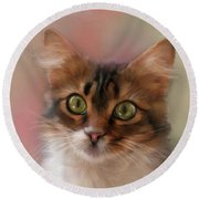 Round Beach Towel featuring the photograph Pretty Kitty by Mary Timman