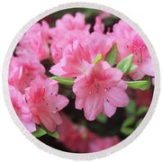 Pretty Pink Azalea Blossoms Round Beach Towel