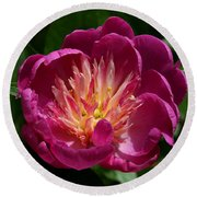 Pretty Pink Peony Flower Round Beach Towel