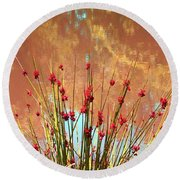 Round Beach Towel featuring the photograph Pretty Pond Weeds by Ellen O'Reilly