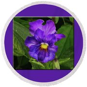 Pretty Purple Pansie Round Beach Towel