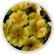 Pretty Yellow Primrose Round Beach Towel