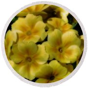 Pretty Yellow Primrose Round Beach Towel