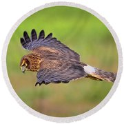 Prey Flyby Round Beach Towel