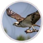Prey In Talons Round Beach Towel