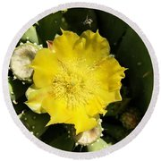 Prickly Pear And The Bee Round Beach Towel