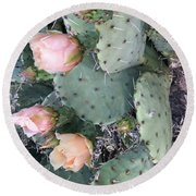 Prickly Pear Round Beach Towel by Erika Chamberlin