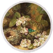 Primroses And Bird's Nests On A Mossy Bank Round Beach Towel